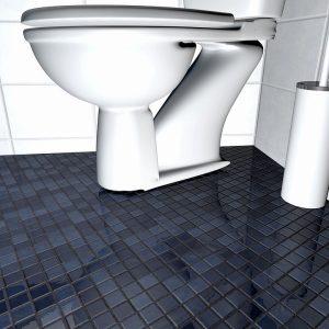 cuvette WC très sale